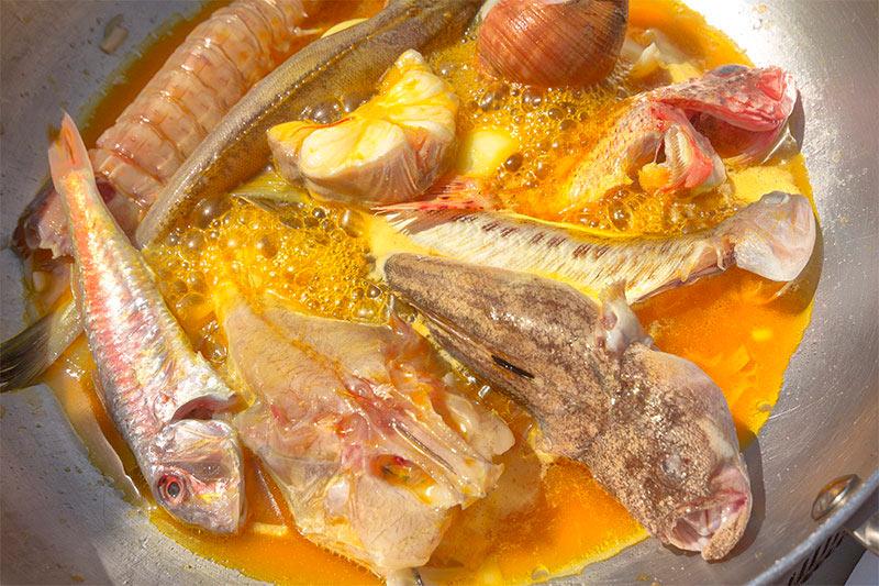 I pesci del Brodetto portorecanatese